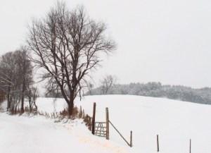 002-vermont-snow-scene