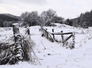 019-vermont-snow-scene