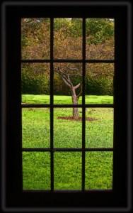 026-v-vermont-window