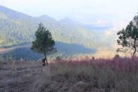 view puncak 1
