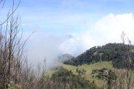 Sabana bagus di lihat dari puncak