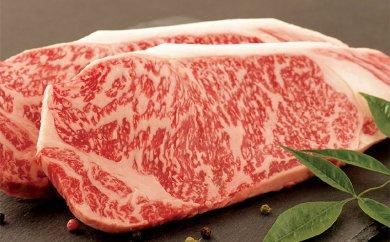 長崎県 長崎和牛サーロインステーキ 10,000円