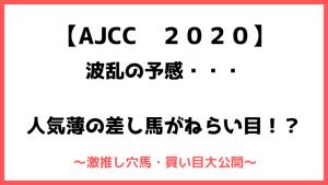 アメリカジョッキークラブカップ(AJCC)