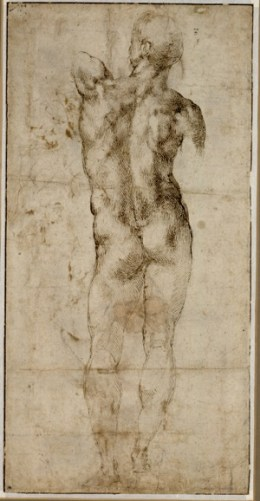 02_Michelangelo Buonarroti_Standing Nude Man_sm