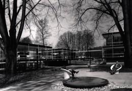 1958년 브뤼셀에서 열린 세계박람회에 출품된 독일관 건물 모습. Sep Ruf와 공동으로 설계 건축된 이 작품은 1956-58년 2년여에 걸쳐 건설되었다.