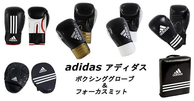 Boxing Gloves、Focus Mitts等入荷!