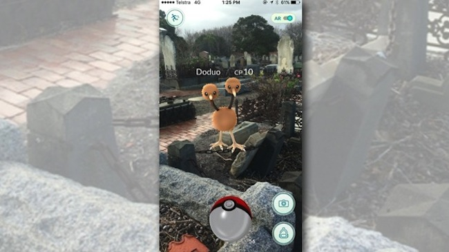 การเล่นเกมล่า Pokemon ตามป่าช้ากำลังเป็นที่นิยม : ภาพจาก 3aw.com.au