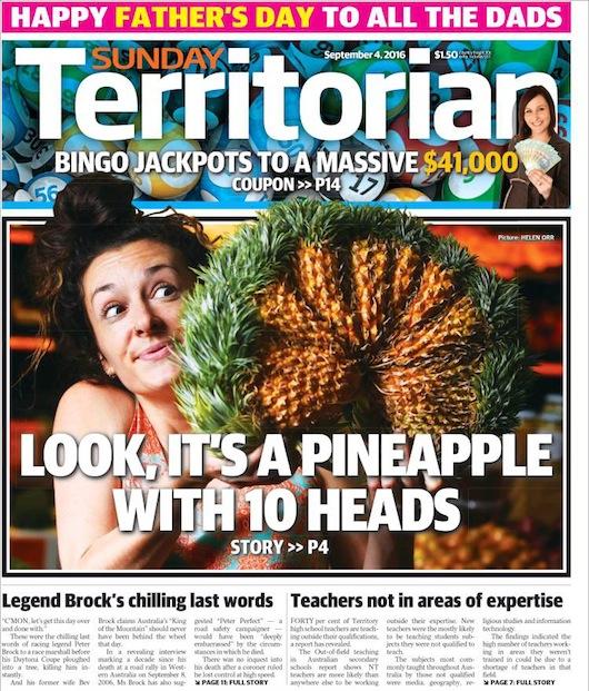 2016-06-12-pineapple2