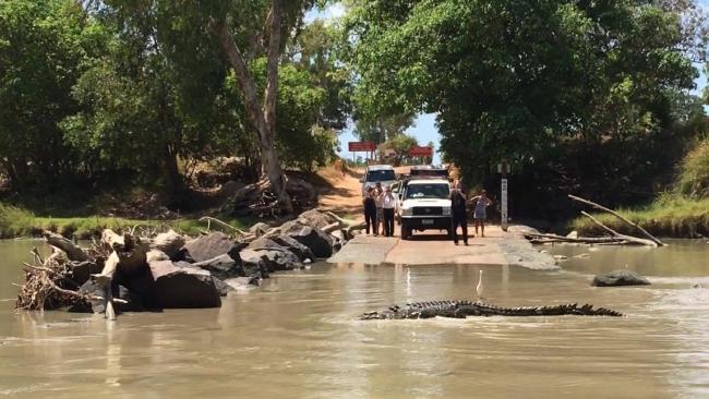 ทางข้ามแม่น้ำตรงจุด Cahills Crossing มีจระเข้กำลังขวางถนน : ภาพจากนสพ. NT News