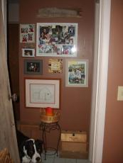 I've started a small wall for displaying family photos - I've never really been one to hang pictures all over the place, but my stepmom has a hallway for pictures so I'm totally copying her. Notice my dog, Phoebe, posing at the bottom of the frame.
