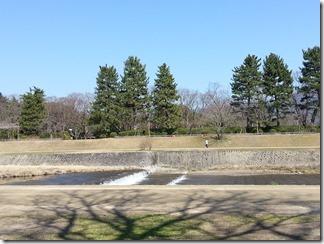 3-17-kamogawa (2)