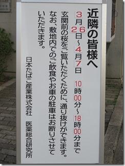 JT-sakuranotoorinuke-2018 (3)