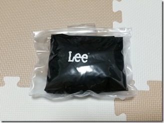 Lee-ryukkusakku (19)