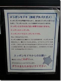 akuapiaakutagawa (16)