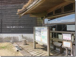 chihaya-hositosizannomyu-jiamu (1)