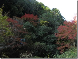 hanaseyamanoiewomezasu (29)