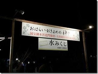 hatumoude-simogamojinjya (15)