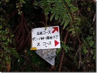 hirogawarasugawaratyou-dannotouge (65)