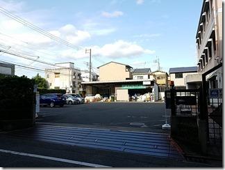 kamigyourisaikurusute-syon (12)