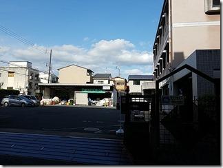 kamigyourisaikurusute-syon (3)