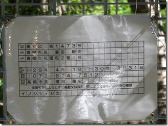 kasida (12)