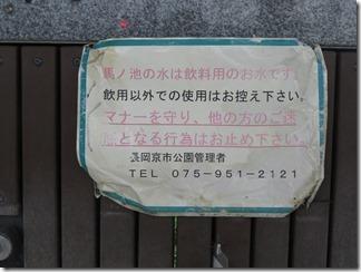katuragawakasennsi-nisiyamatennouzan (54)