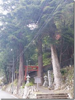 kumogahara-oomori (43)