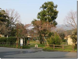 kyoto-iwakura (29)