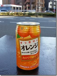 kyouto-fusiginajidouhanbaiki (5)