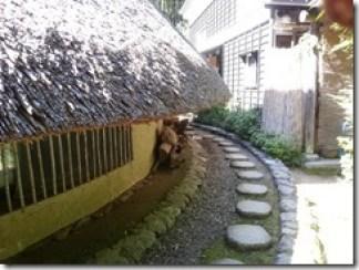 madamamura2015-07-20 16.20 (6)