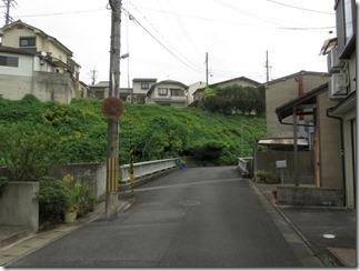 mamiyagawa (10)