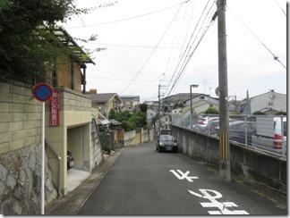 mamiyagawa (9)