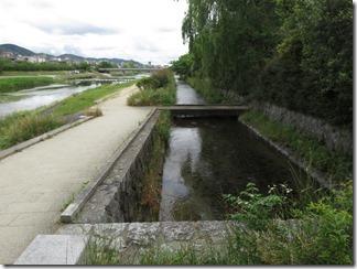 misosokigawa-kamogawa-hotaru-sijyoumade (2)