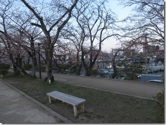 nagaokatenmanguu-sakura-raitoappu (15)