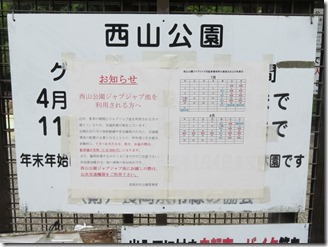 nisiyamakouen-jyabujyabuike (5)