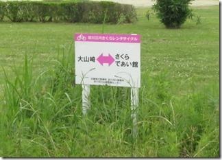 ooyamazaki-katuragawakasennsi (65)
