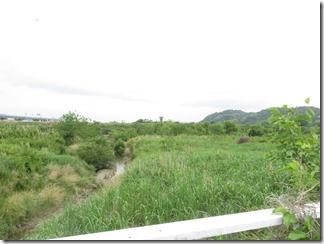 ooyamazaki-katuragawakasennsi (71)