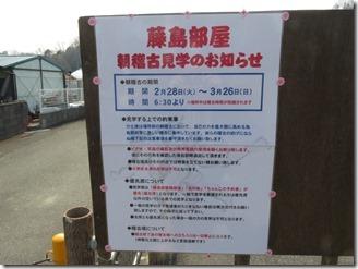 sumou-fujisimabeya (4)