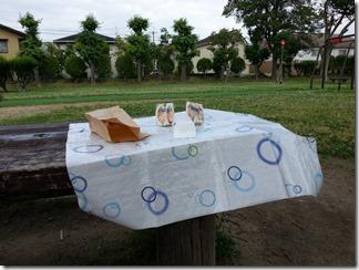 takatukisiroato-park-nomado (7)