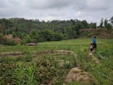 Thai countryside.