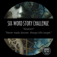 "Six-Word Story Challenge - ""Assassin"""