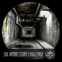 "Six-Word Story Challenge - ""Expected"""