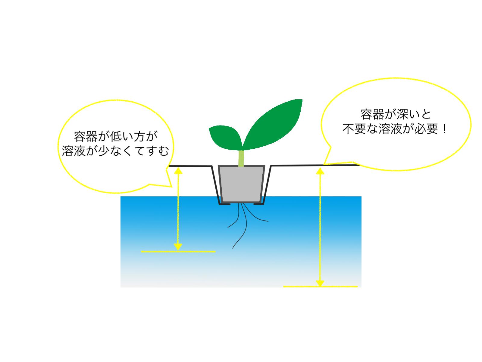水耕栽培の容器の選び方