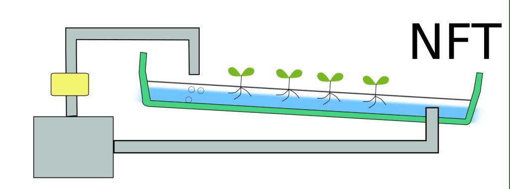 NFTの水耕栽培の様子を表した図