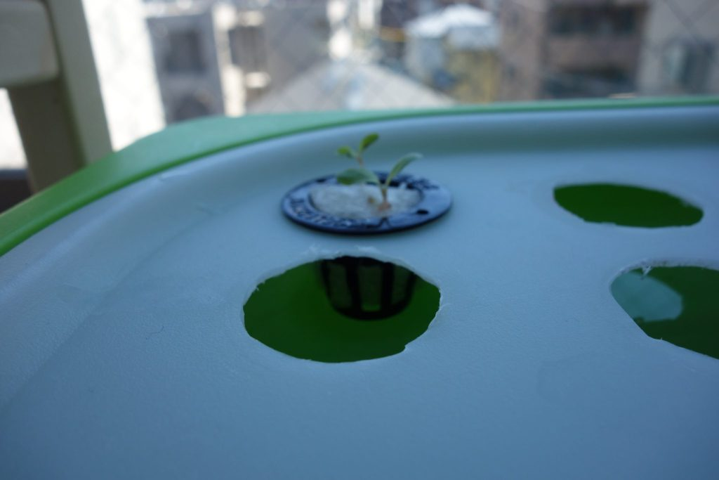 DIY Hydroponics open a hole to store pot