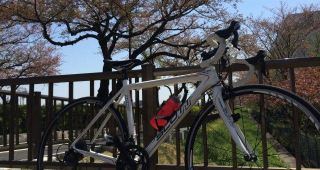 緑に囲まれてサイクリングを楽しむ!東京都内の公園サイクリングコース6選