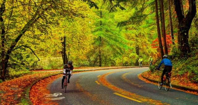[保存版]自転車の秋!レース、サイクリング、フリマ、フェス!14イベント厳選まとめ