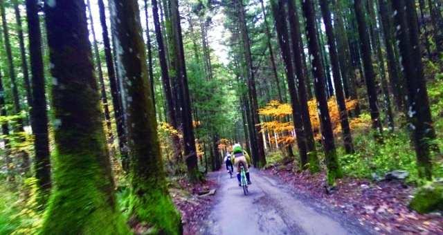 ココが東京?「都心に一番近い村」で秋の絶景を巡る! ヒルクライム系自転車イベントが11/6(日)に開催
