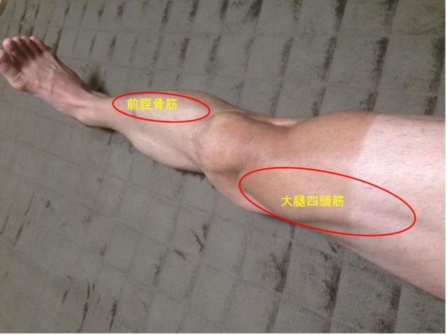 前脛骨筋と大腿四頭筋 特に前脛骨筋の痛みが気になりました