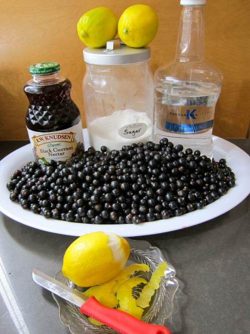 Jittery Cook Blackcurrant Vodka